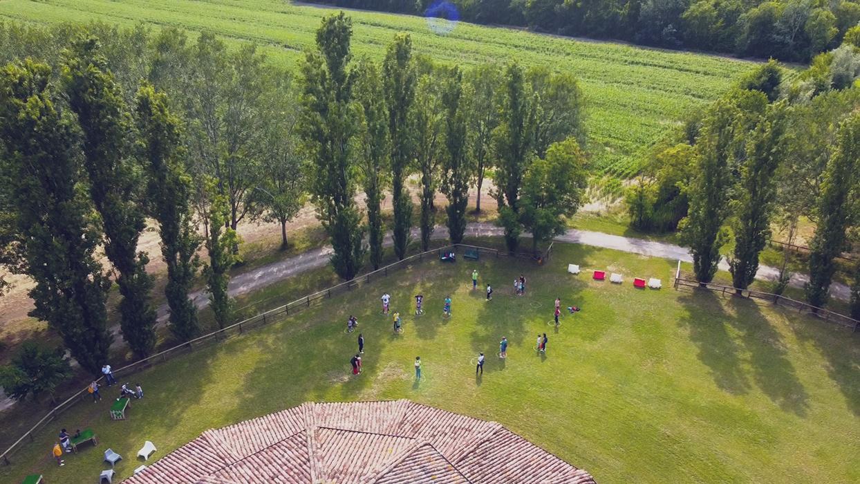 La raganella a scuola in natura ripresa aerea